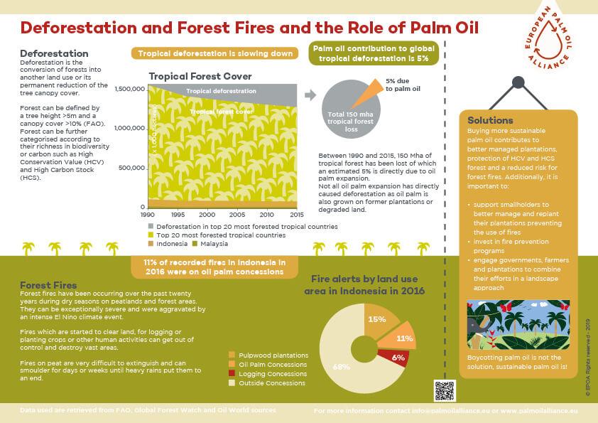 deforestation infographic