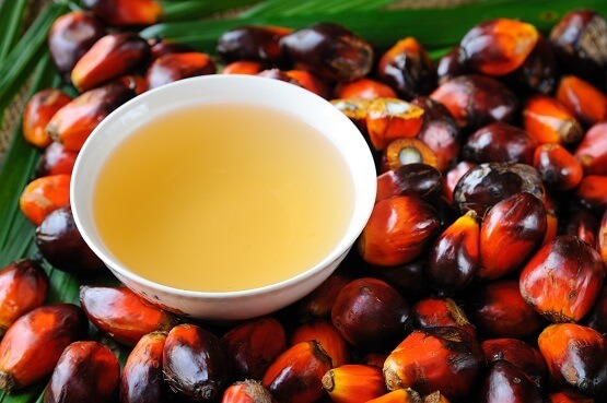 palm oil and fruit small